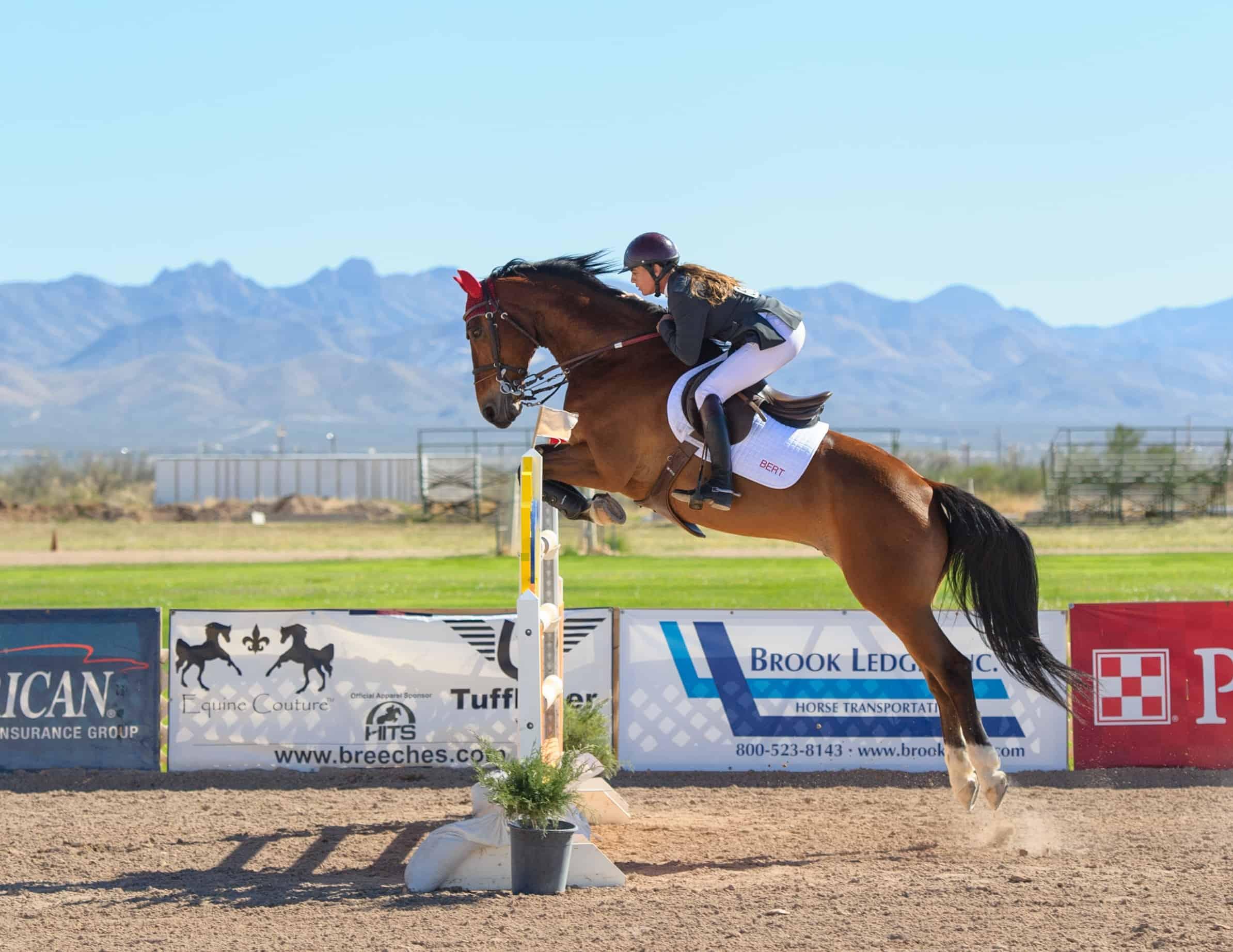 Horse Shows Around The World