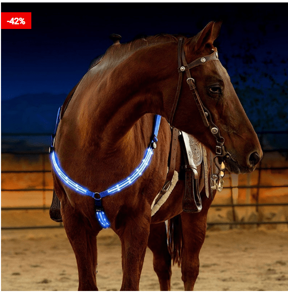 Horse Harness with LED Light To Help Your Horse