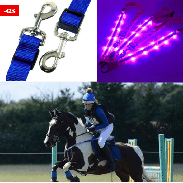 Horse Harness with LED Light To Help Your HorseHorse Harness with LED Light To Help Your Horse