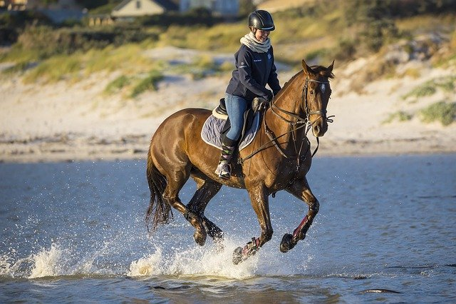 A man riding a horse in a body of water